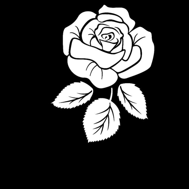 цветы цветы черно белые картинки на открытку будут вымученные кадры